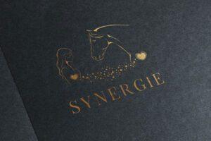 logo-synergie-2