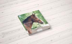 ebook conseils pour réussir ses photos de chevaux