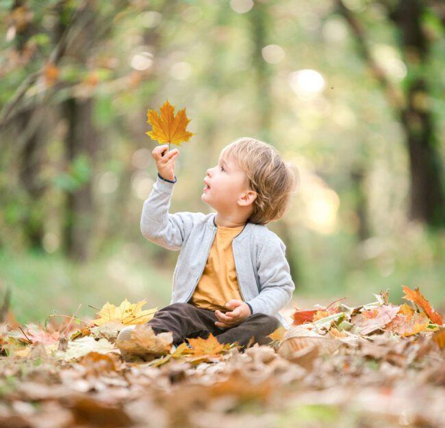 Enfant assis dans la forêt tenant une feuille d'automne